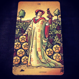 Nine of Pentacles 010521